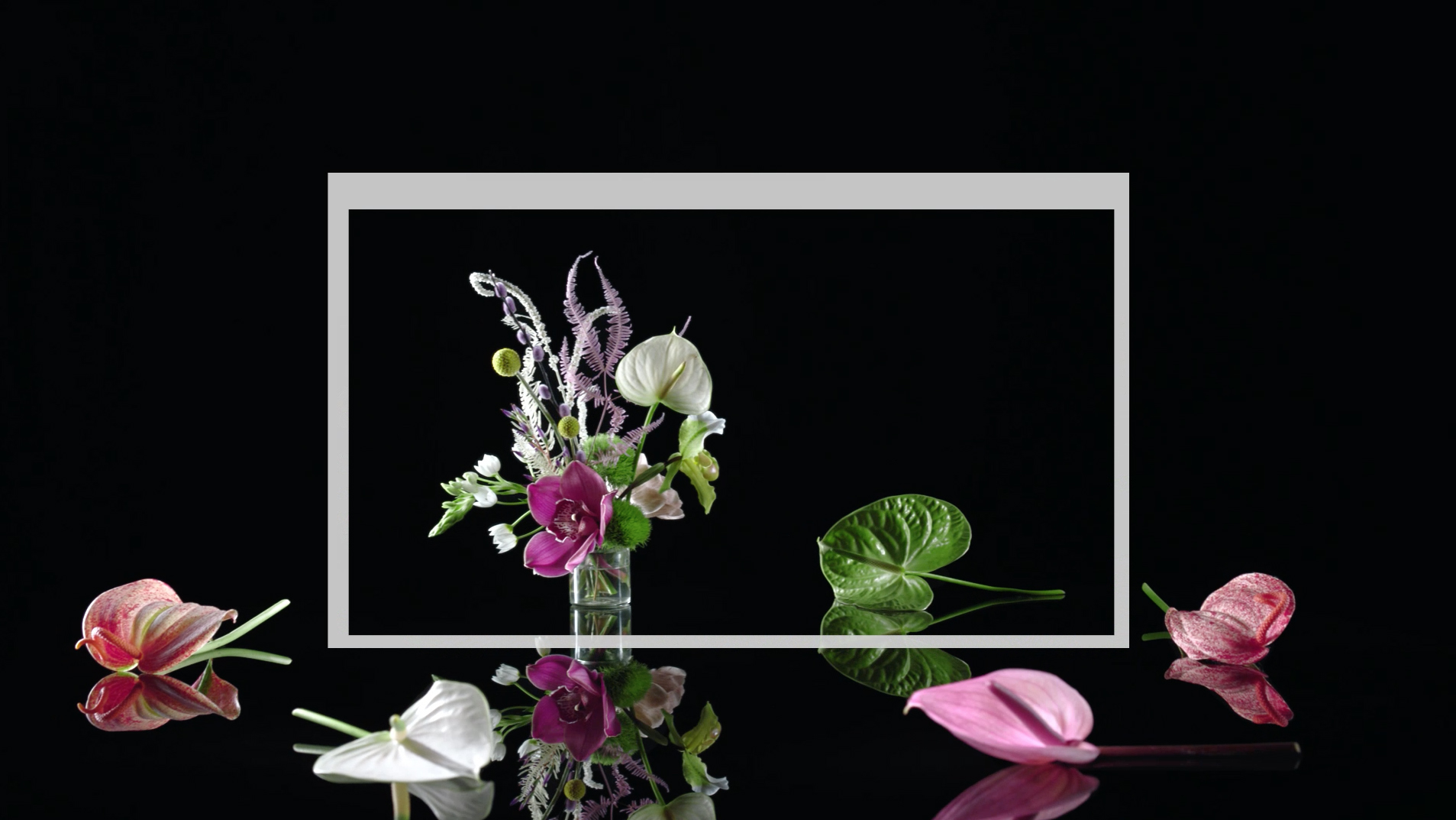 Florist15 T01 Squarespace LernetAndSander Hornet