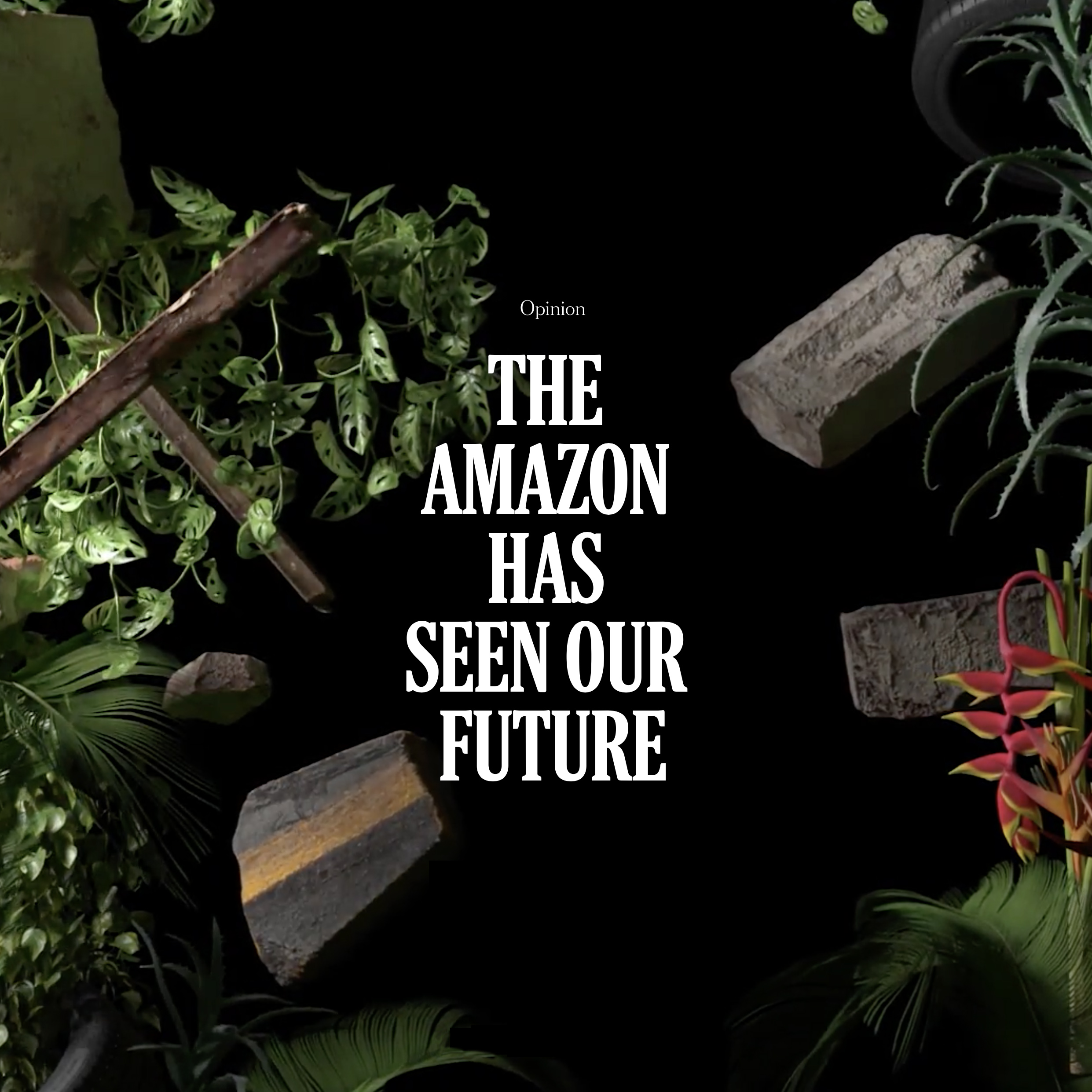 NYTimes - The Amazon Has Seen Our Future
