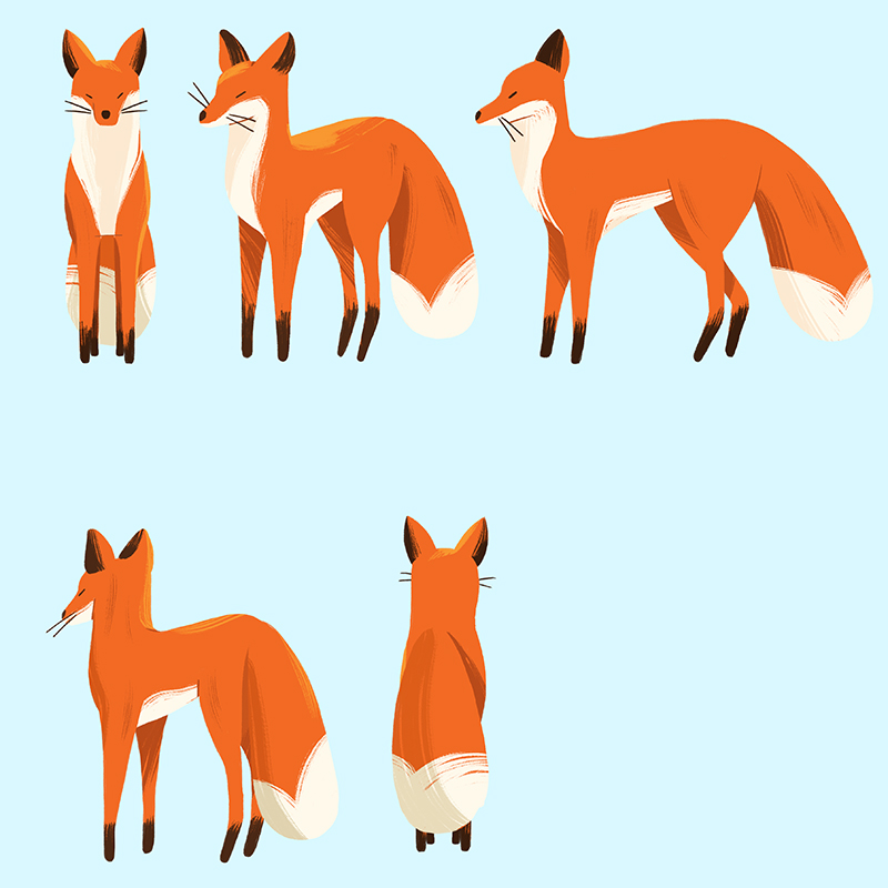 babw01 fall15 fox character dt