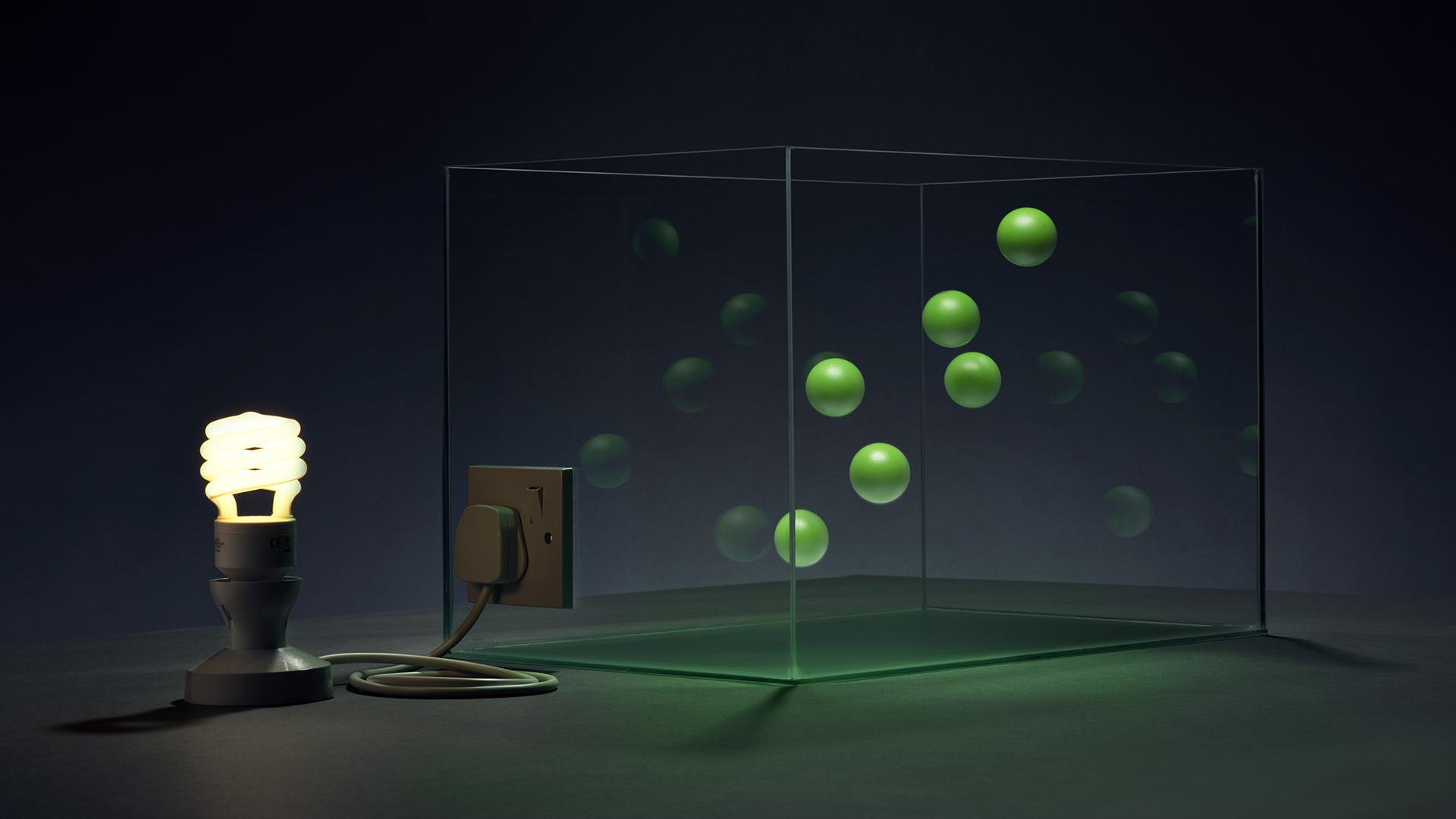 Lightbox T02 kylebean