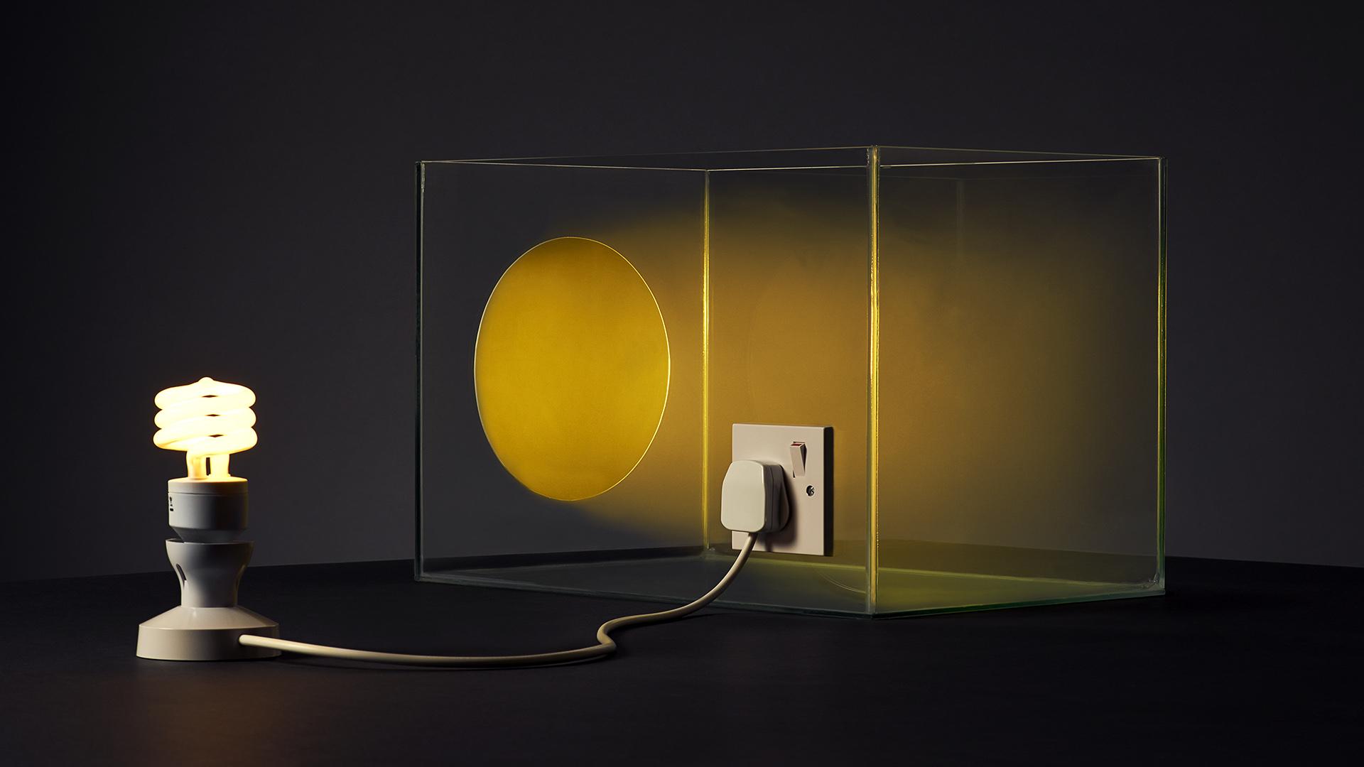 Lightbox T03 kylebean