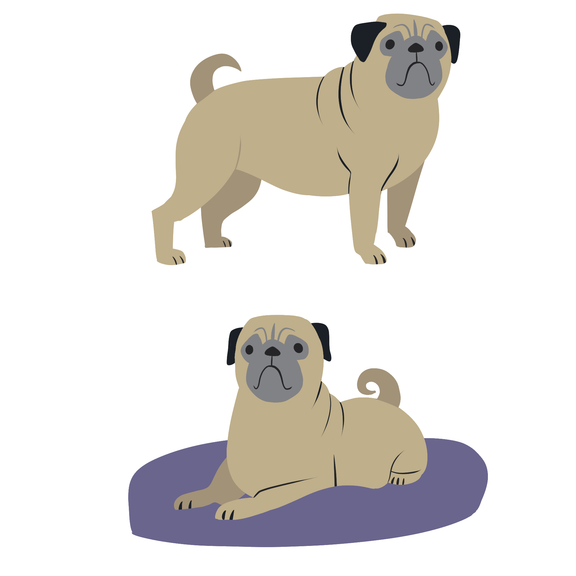 C21 bts12 Spot05 12 dog