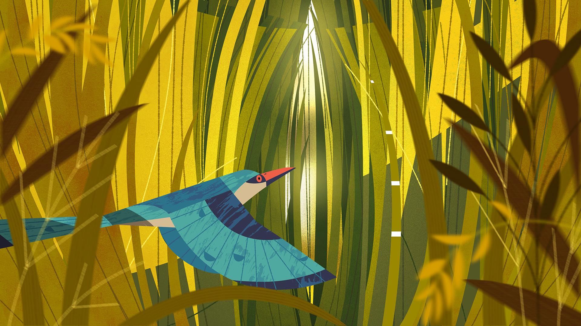 Mutual Bird