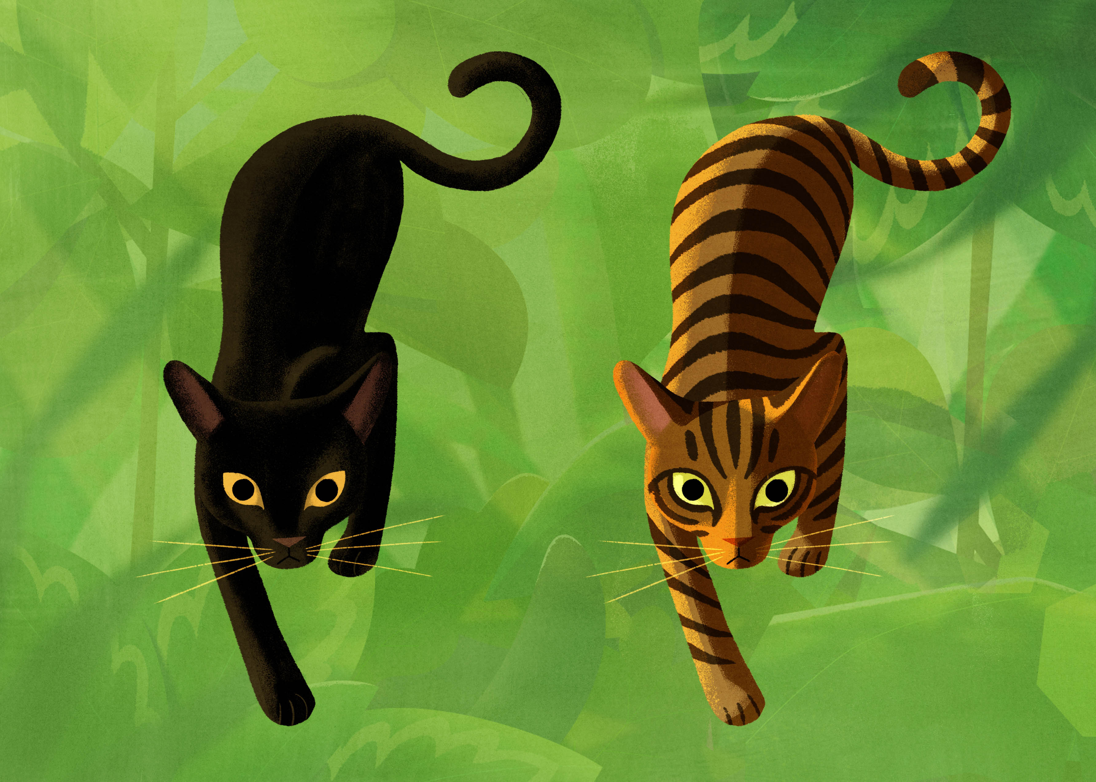 Mutual cats