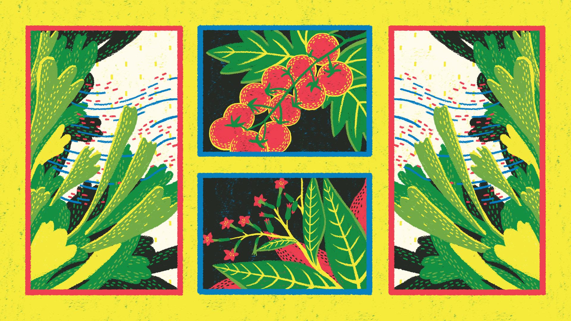 Plants Talk - Still 1