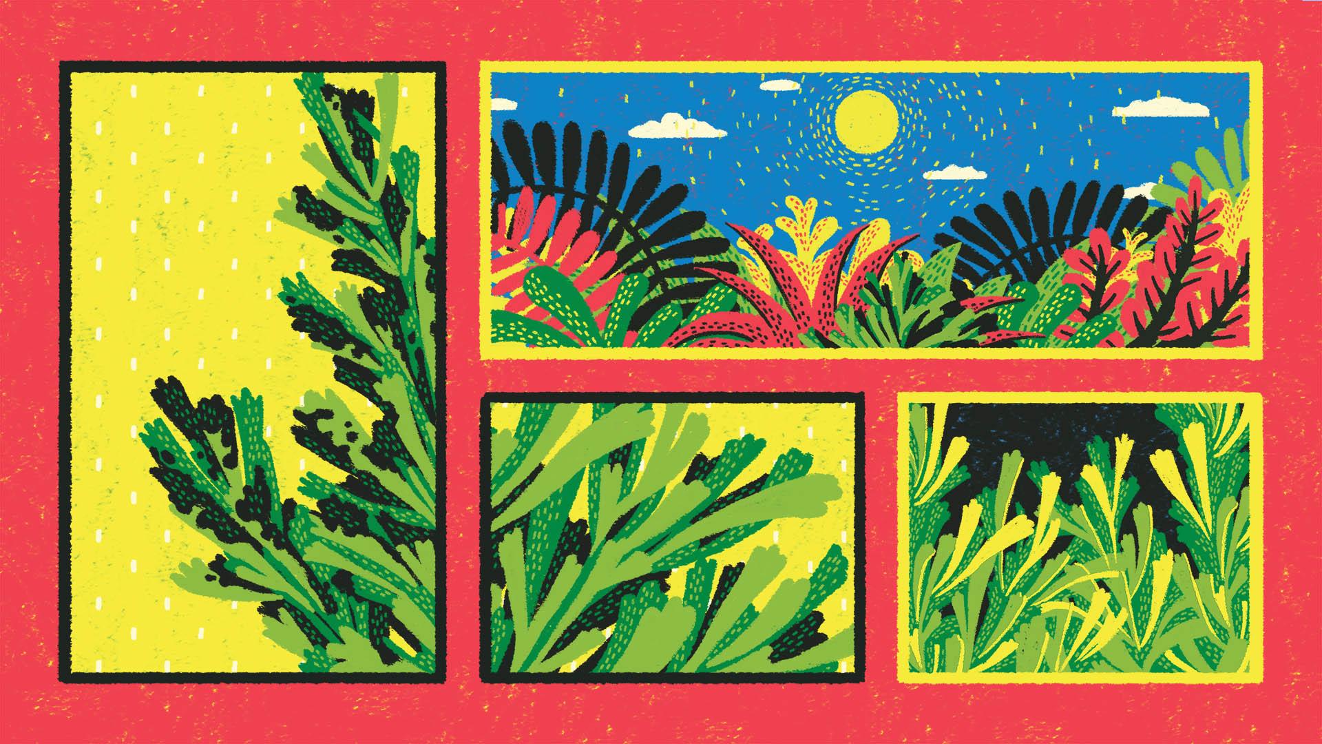 Plants Talk - Still 2