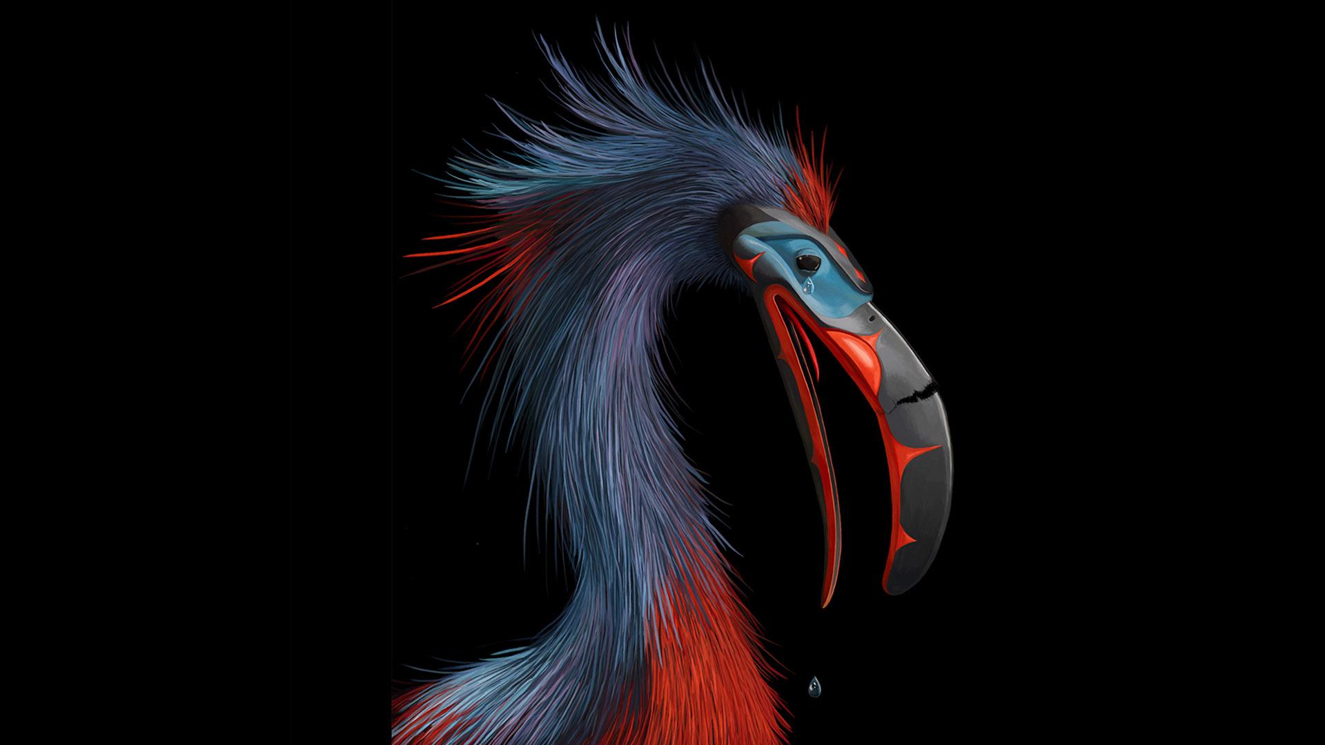 PICTOPLASMA T01 2015 THUNDERBIRD Yves